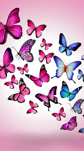 Скриншот экрана Butterflies by Happy live wallpapers на телефоне и планшете.