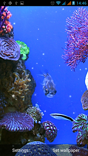 Скриншот экрана Aquarium by Best Live Wallpapers Free на телефоне и планшете.